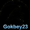 Gokbey23
