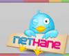 Nethane