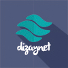 DizayNet