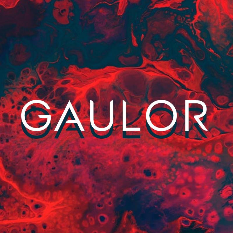 Gaulor