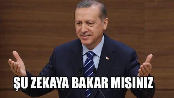 Beykozlu25