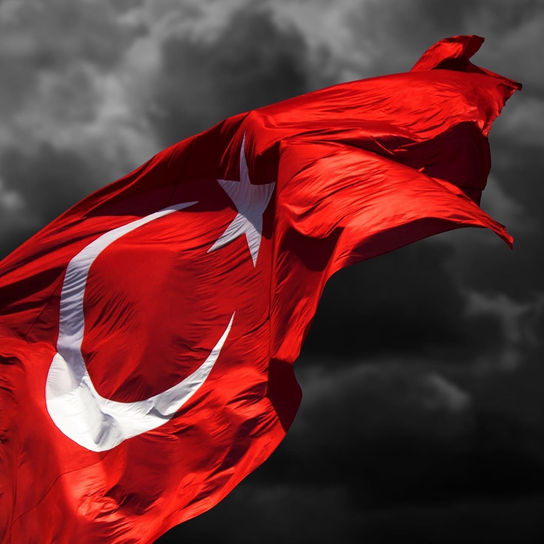 TempoMedya